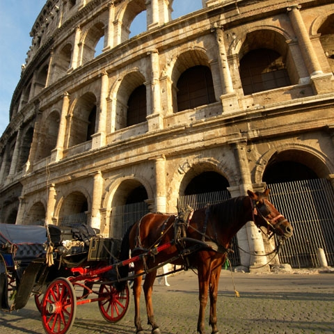 Carriage in Front of the Colosseum