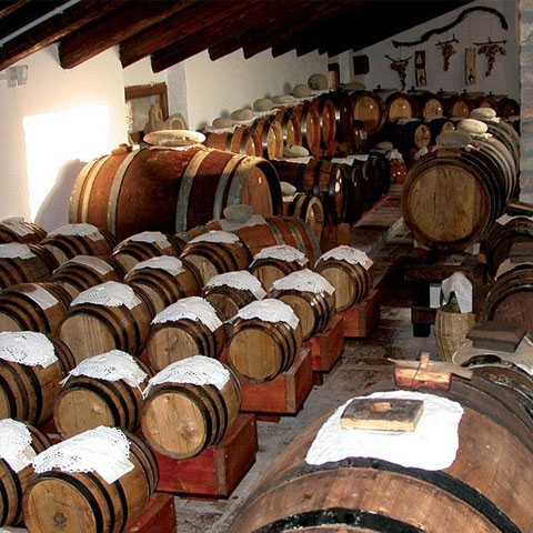 Making Balsamic Vinegar in Modena