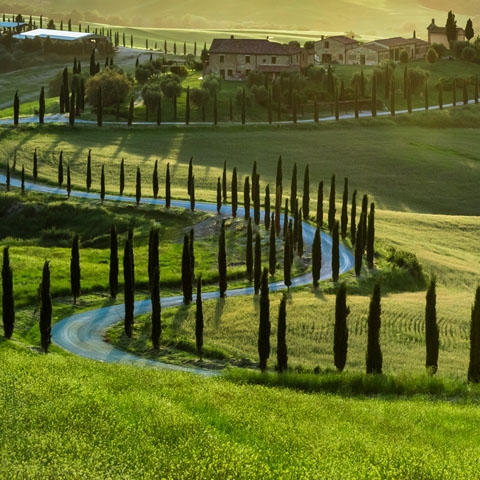Tuscan Hill Country