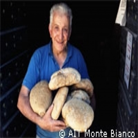 Aosta Italy typical bread
