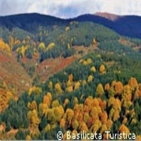 Fall colors Potenza Italy