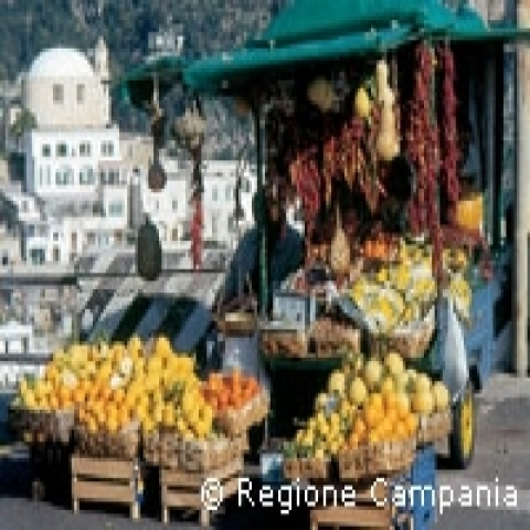Fresh citrus fruits Amalfi Coast Italy