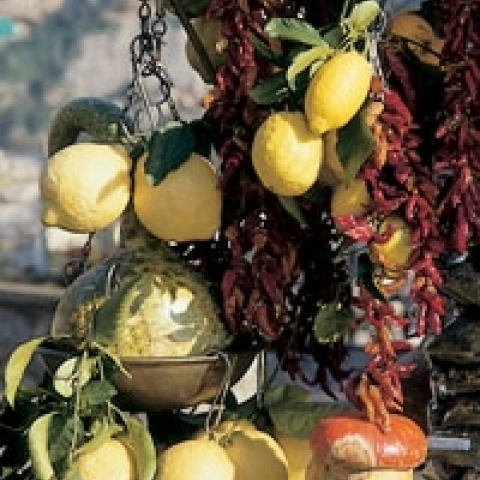 Lemons from Amalfi Coast Italy