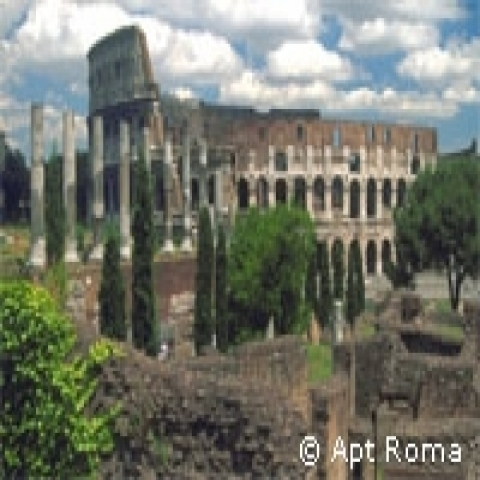 The Coloseum Rome Lazio Italy