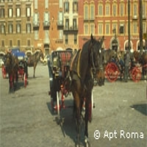 Horse cart in Rome Italy