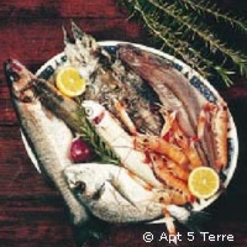 Cinque Terre Travel Guide Cinque Terre Trip Monterosso