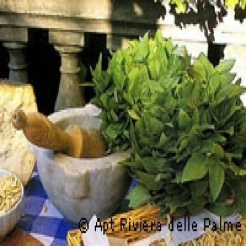 Fresh Pesto from Portofino Italy