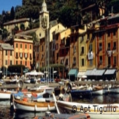 Boats in Portofino Italy