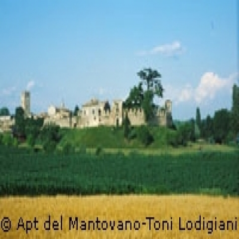 The City from the fields Mantua Italy