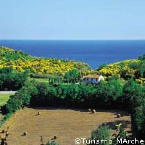 San Bartolo natural area in May Marche Italy