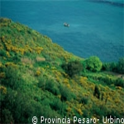 A view of San Bartolo natural park in Urbino coast Italy