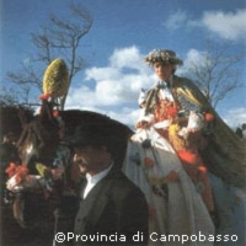 Traditional folklore from Campobasso Italy