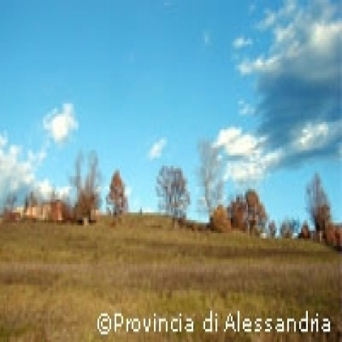 Fall in the countryside around Alessandria Piedmont Italy