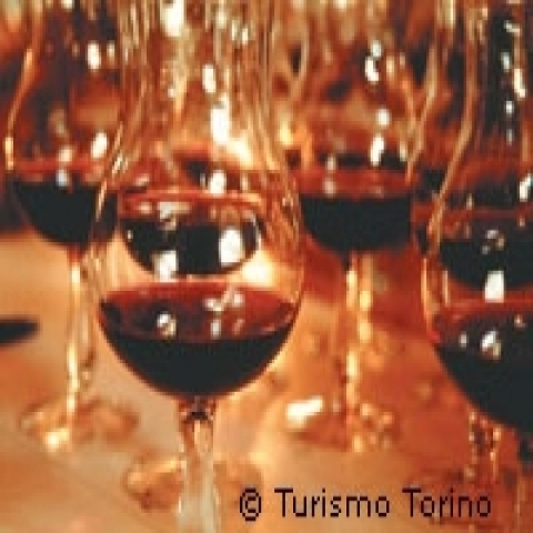 Typical red wines Piedmont Italy