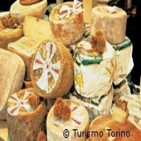 Typical cheeses Piedmont Italy
