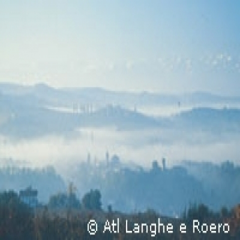 Overview on the Langhe countryside Alba Italy