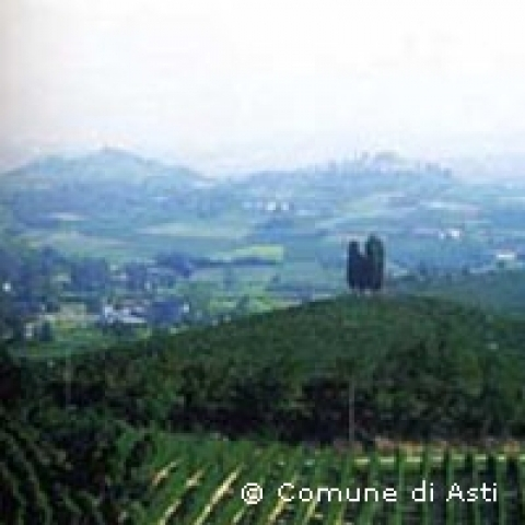 The hillcountry around Asti Italy