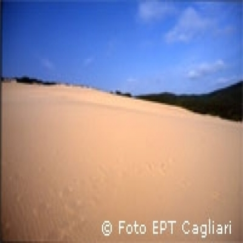 Sandy dunes around Cagliary Italy