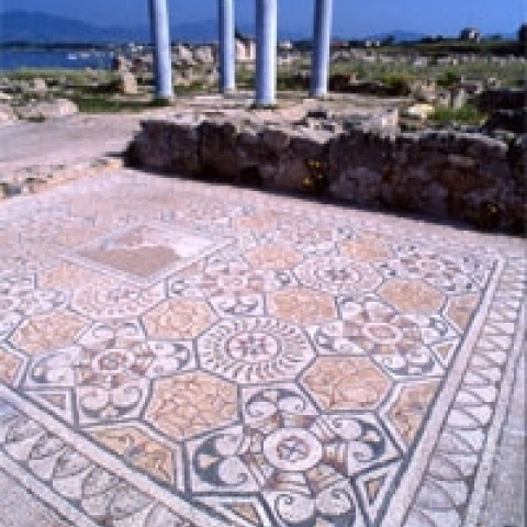Beautiful mosaics in Nora  nearby Cagliari Italy