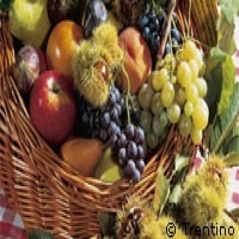 Seasonal fruit in Trentino Alto Adige Italy