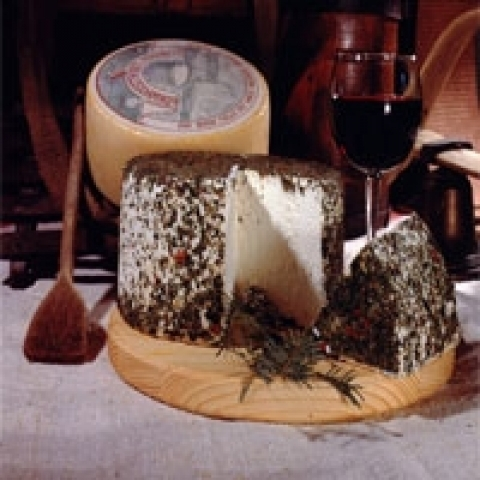 Traditional cheeses from Trento Italy