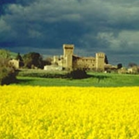 Spedaletto Val D'Orcia Castle Tuscany Italy