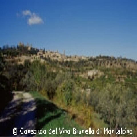 A view of Montalcino in Tuscany Italy