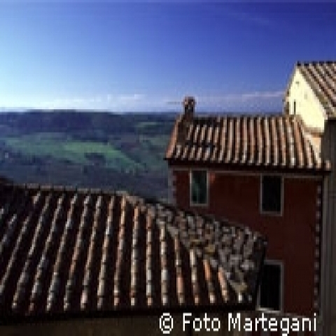 Old roofs of Tuscany Italy