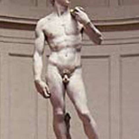 The David by Michelangelo at Accademia Gallery Florence Italy