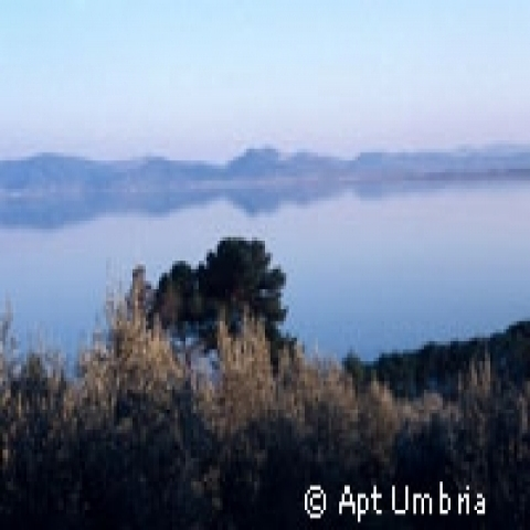 View of Trasimeno Lake Umbria Italy