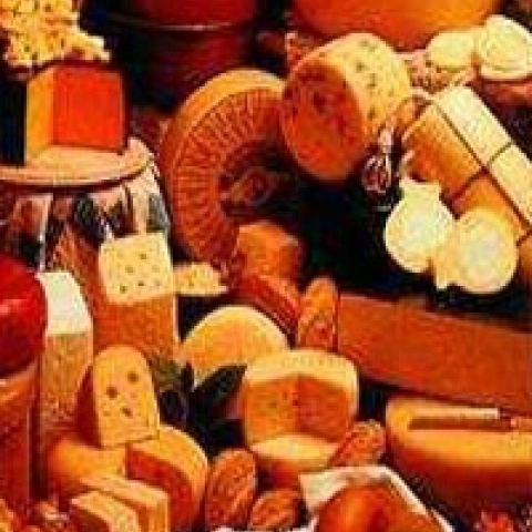 Typical cheeses from Spoleto Italy