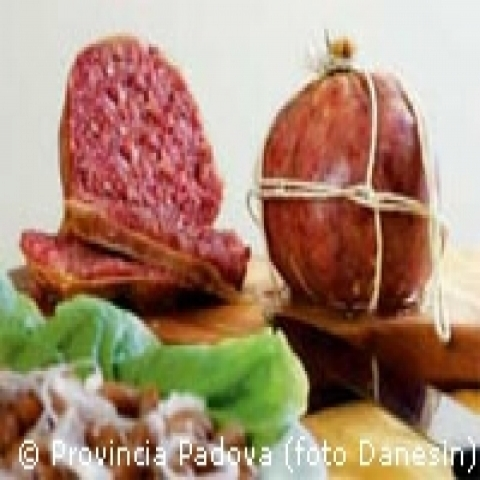 Typical Mortadella from Veneto gastronomy Italy