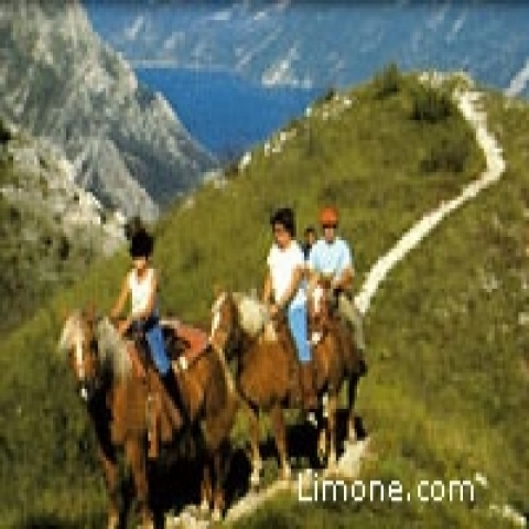 Horse riding in Lake Garda Italy
