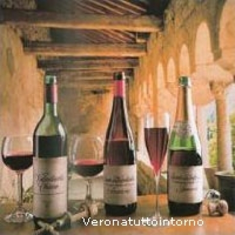 Typical wines from Lake Garda Italy