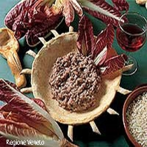 A typical dish with red radicchio chicory from Treviso Italy