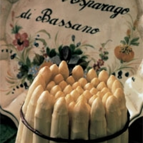 The typical white asparagus from Bassano near Vicenza Italy