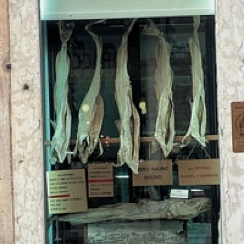A shop with the dried cod in Vicenza Italy