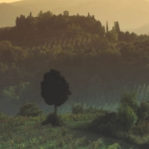A view of Volterra from the countryside Italy