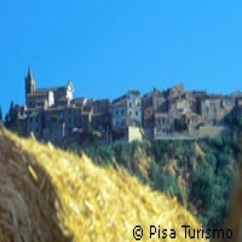 Hay fields outside Volterra Italy