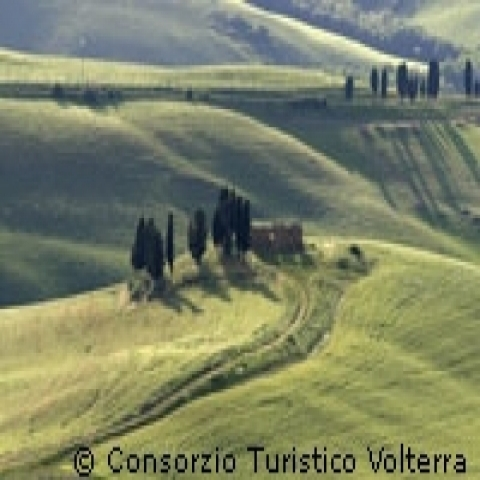 Rolling hills in Volterra countryside Italy