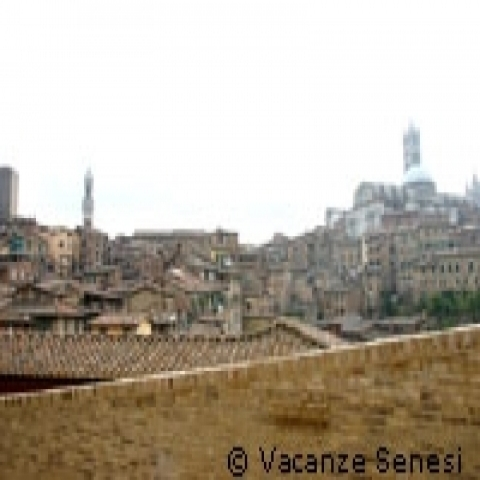 A view of Siena Italy