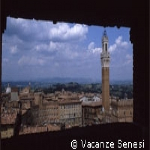 A view of Siena with Mangia Tower Italy