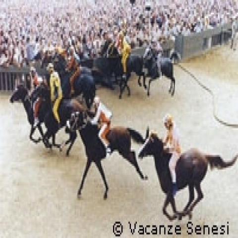 The start of the horse Palio in Siena Italy
