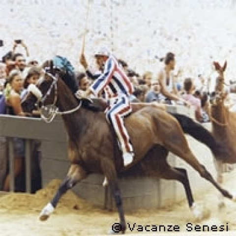 The famous Palio of Siena Italy