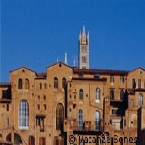 Medieval houses in Siena and Cathedral bell tower Italy