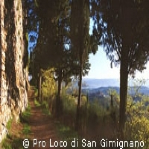 A hiking trail near San Gimignano Italy