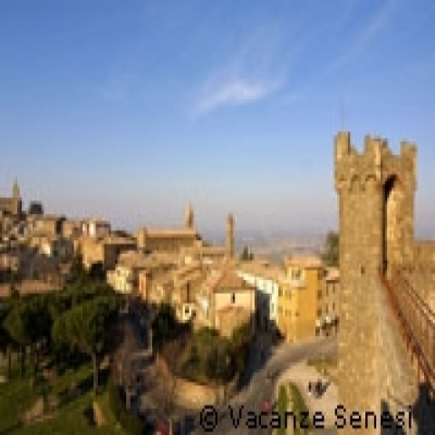 A glimpse of Montalcino Italy