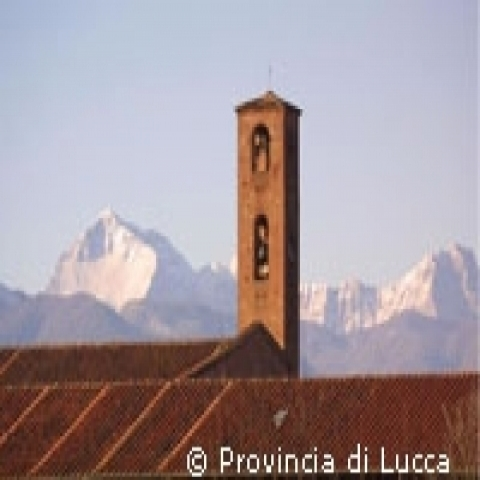 Bell tower with Apuan Alps in background near Lucca Italy