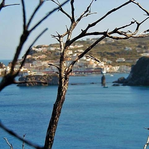 Ponza harbour View