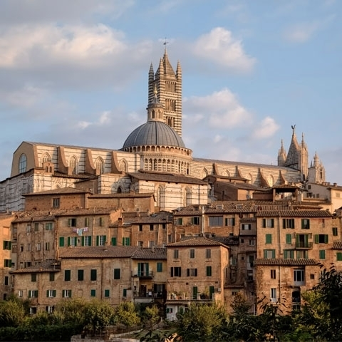 Siena Cathedral View and City